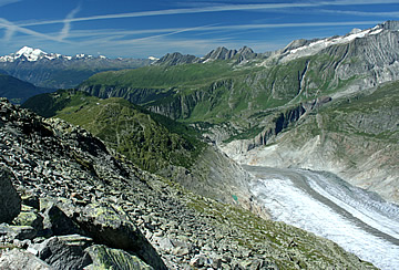 The end of the Aletsch Glacier, below Bettmerhorn