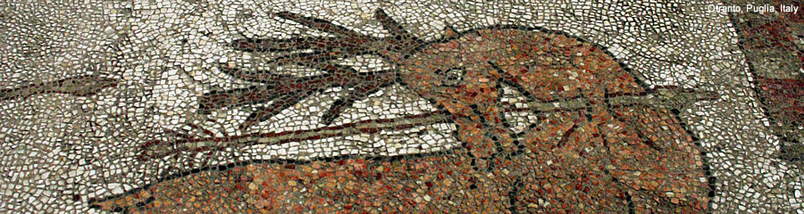 The Silk Route - World Travel: Mosaic, Otranto Cathedral, Puglia, Italy