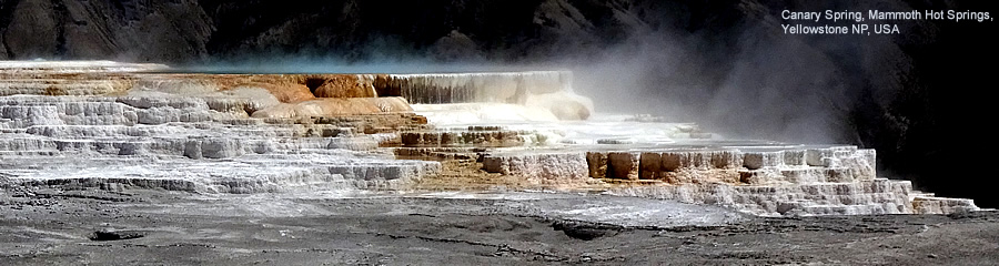 USA: Yellowstone NP Canary Spring, Mammoth Hot Springs
